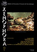 Couverture du Xenophora n°113.