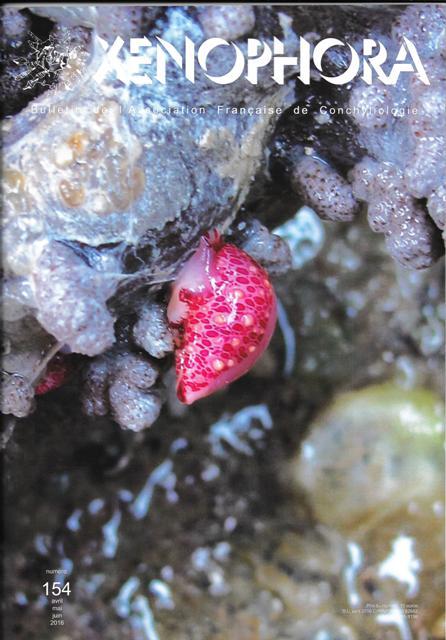 Couverture du Xenophora n°154.