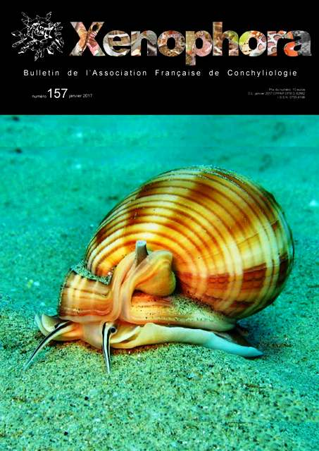 PHOTO : Couverture du 157ième numéro de Xenophora.