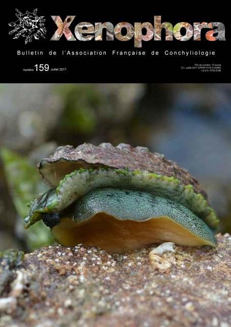 Couverture du Xenophora n°159.