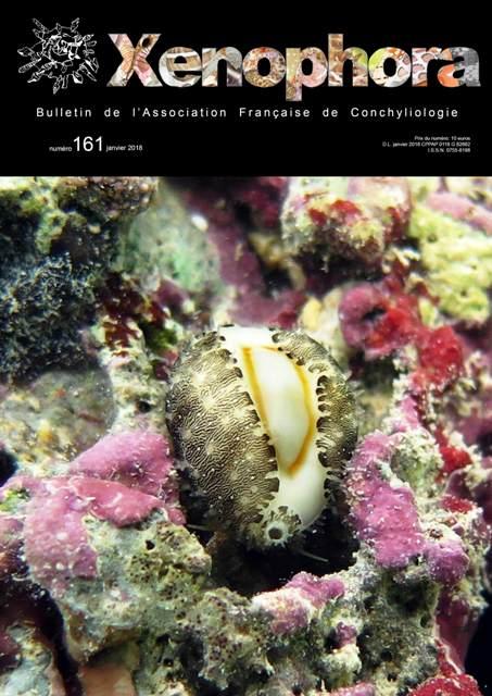 Couverture du Xenophora n°161.