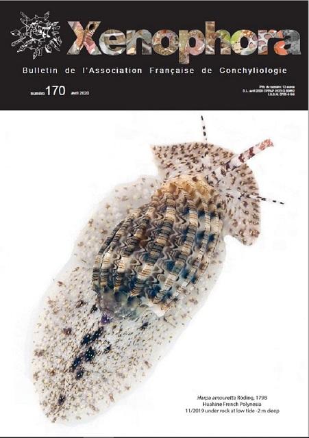 Couverture du Xenophora n°170.