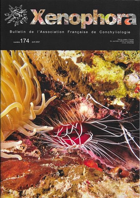 Couverture du Xenophora n°174.