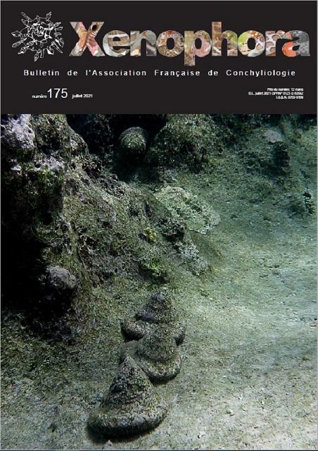 Couverture du Xenophora n°175.