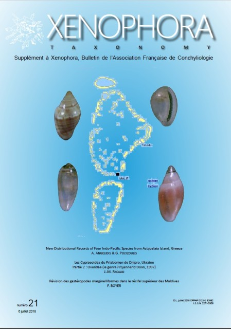 Couverture du Xenophora Taxonomy n°21.