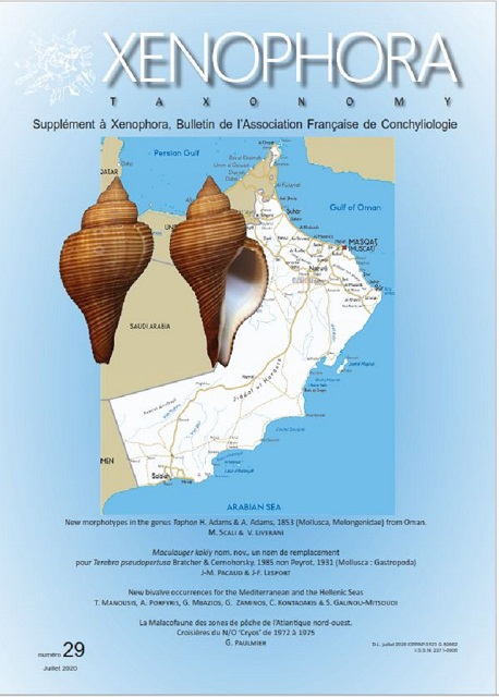 Couverture du Xenophora Taxonomy n°29.