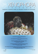Couverture du Xenophora Taxonomy n°3.